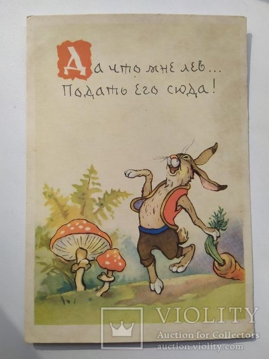 Заяц во хмелю. Художник В.Комаров, фото №2