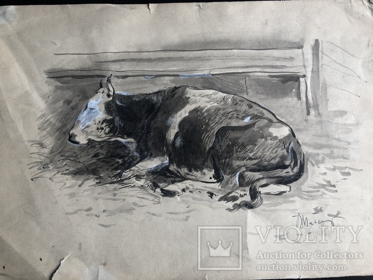 Вітольд Манастирський, малюнок