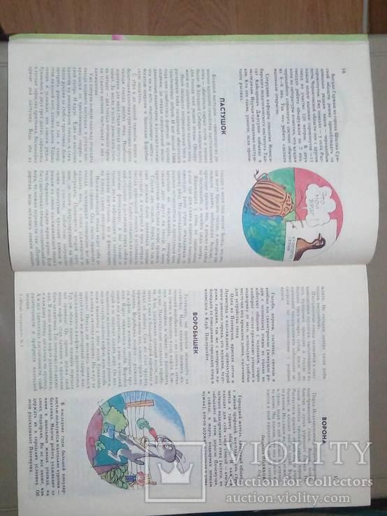 Журнал СССР Юный натуралист, фото №3
