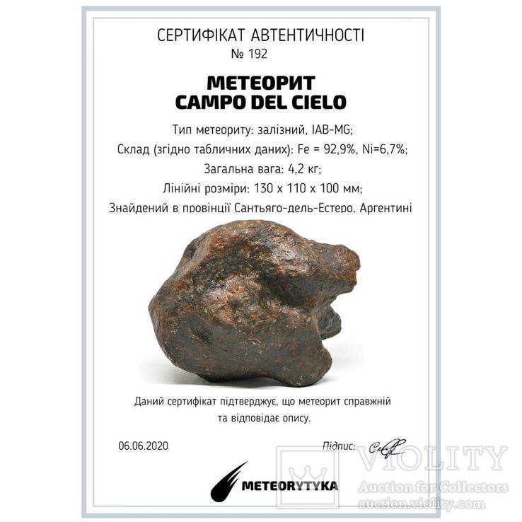 Залізний метеорит Campo del Cielo, 4,2 кг,  Аргентина, фото №3