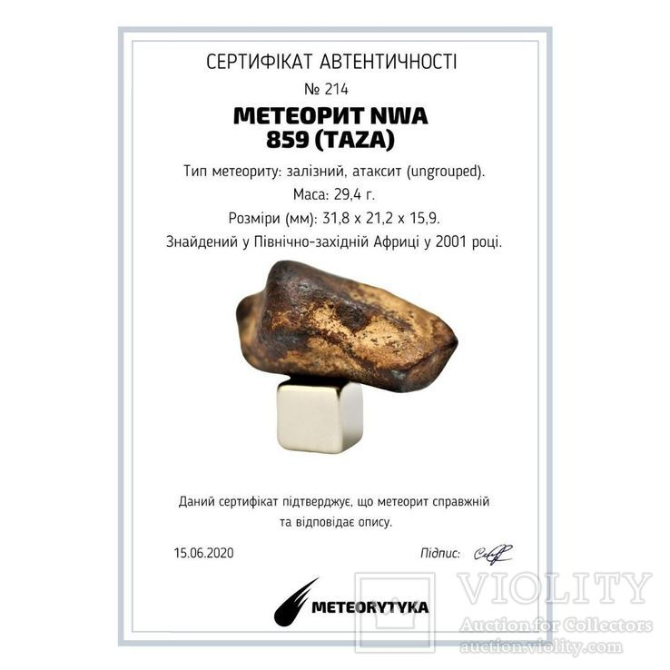 Залізний атаксит NWA 859 (Taza), 29.4 г, з сертифікатом автентичності, фото №3