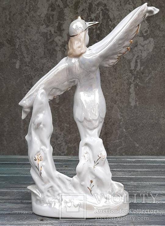 Балерина в роли Аиста. ДФЗ, фото №4