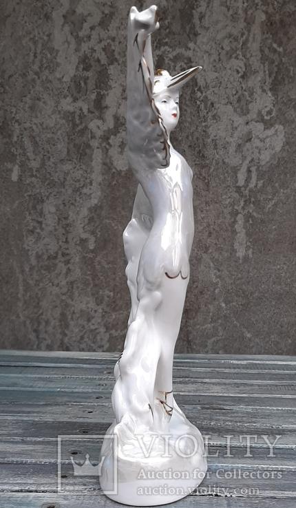 Балерина в роли Аиста. ДФЗ, фото №6