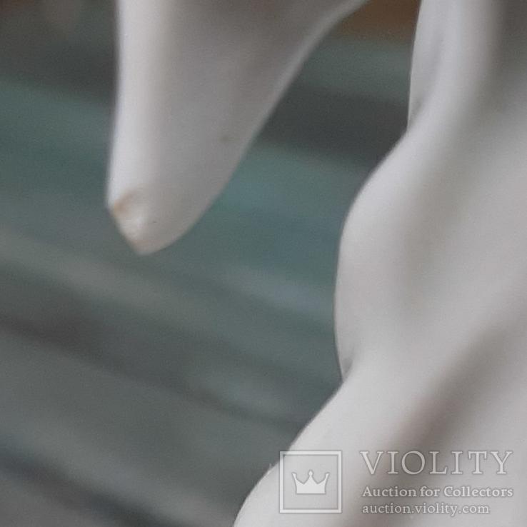 Балерина в роли Аиста. ДФЗ, фото №11