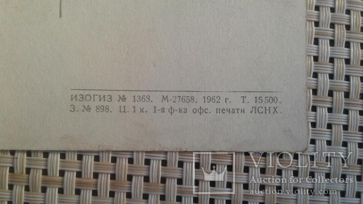 Открытка 1962, Государственный Русский музей, фото №6