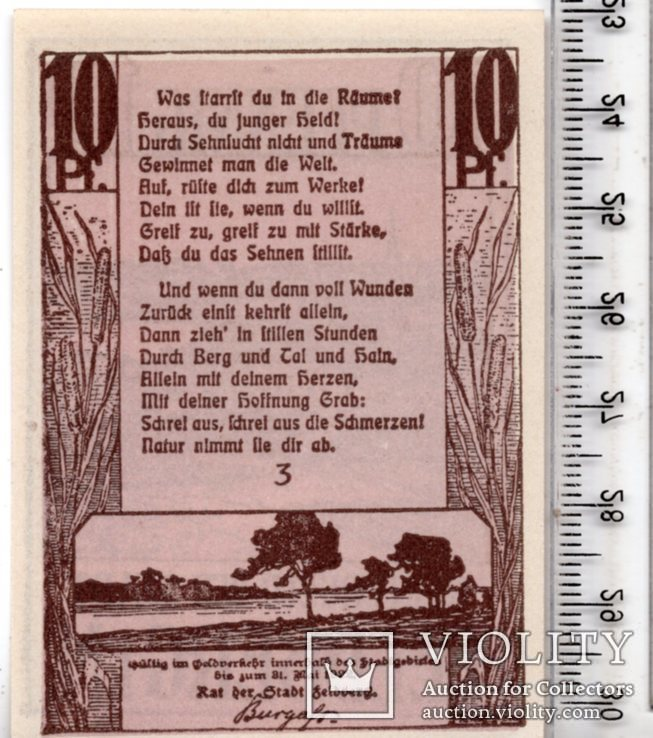 10 пфеннигов. Рейтергельд. Нотгельд. Германия. (3), фото №3
