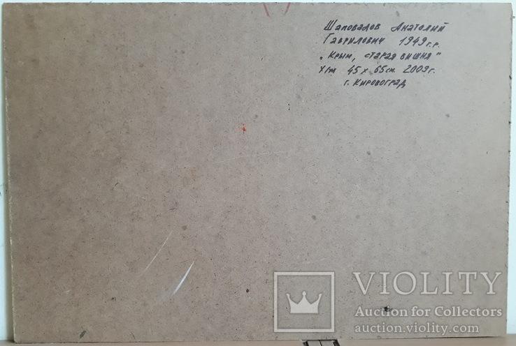 "Анатолий Шаповалов ""Крым. Старая вишня"", 44,5х66см, фото №4"