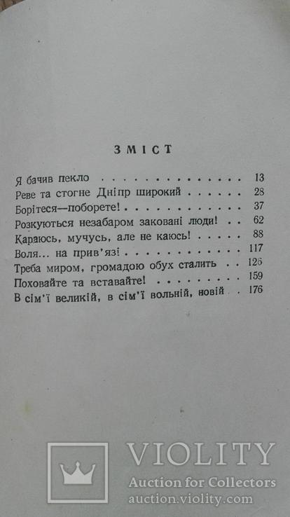Слово про кобзаря   П. Федченко  маленький форат 12х8, фото №4