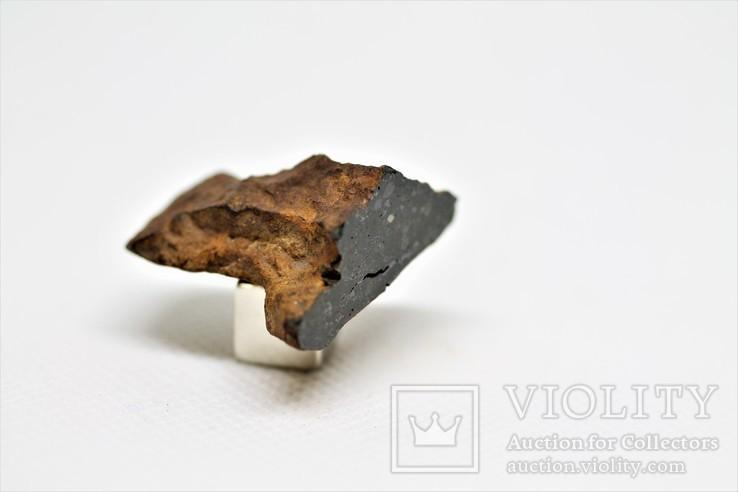 Кам'яний метеорит Tsarev (Царів, Царев), 12,6 г, з сертифікатом автентичності, фото №4