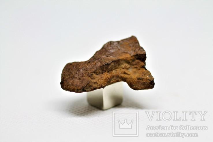 Кам'яний метеорит Tsarev (Царів, Царев), 12,6 г, з сертифікатом автентичності, фото №7