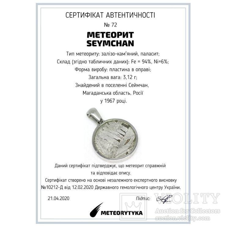Кулон круглий із залізо-кам'яним метеоритом Seymchan, з сертифікатом, фото №3