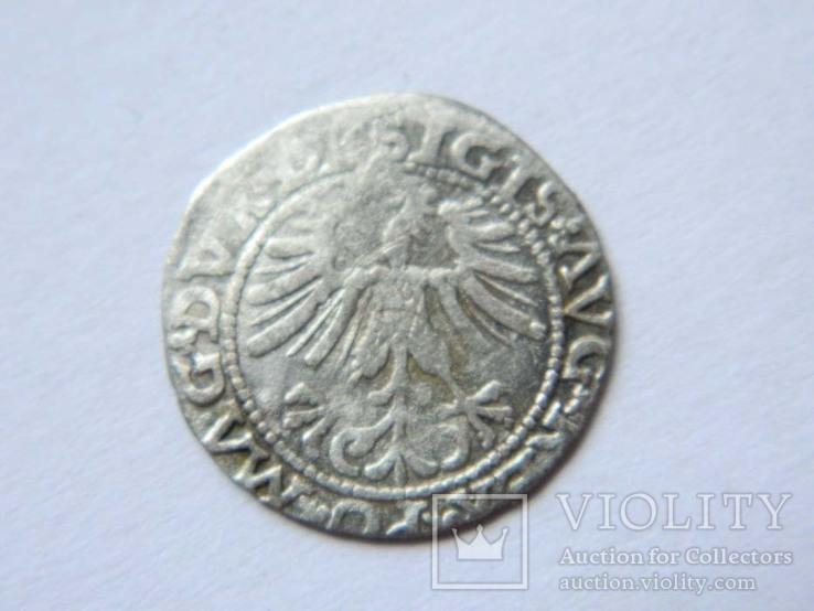 1/2 гроша 1563 р. 4SA282-33, фото №3