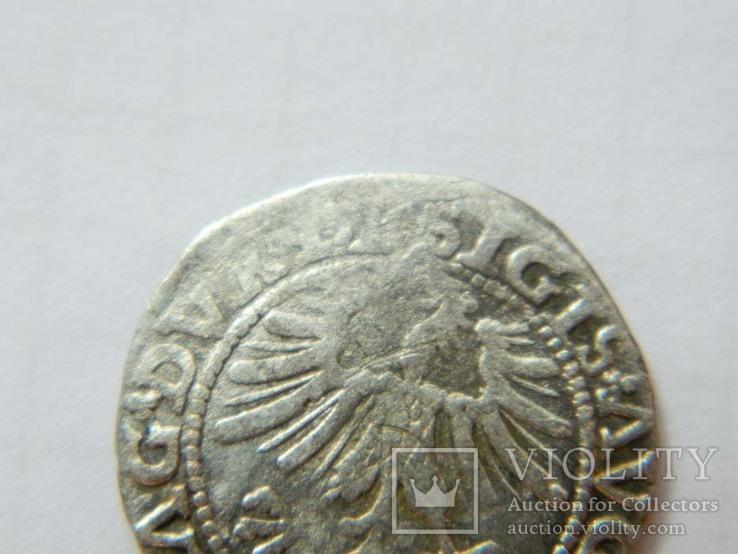 1/2 гроша 1563 р. 4SA282-33, фото №4