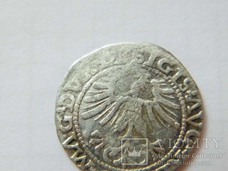 1/2 гроша 1563 р. 4SA282-33, фото №5