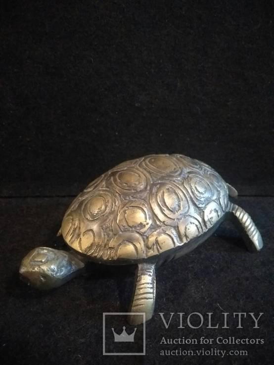 Черепаха-пепельница, фото №2