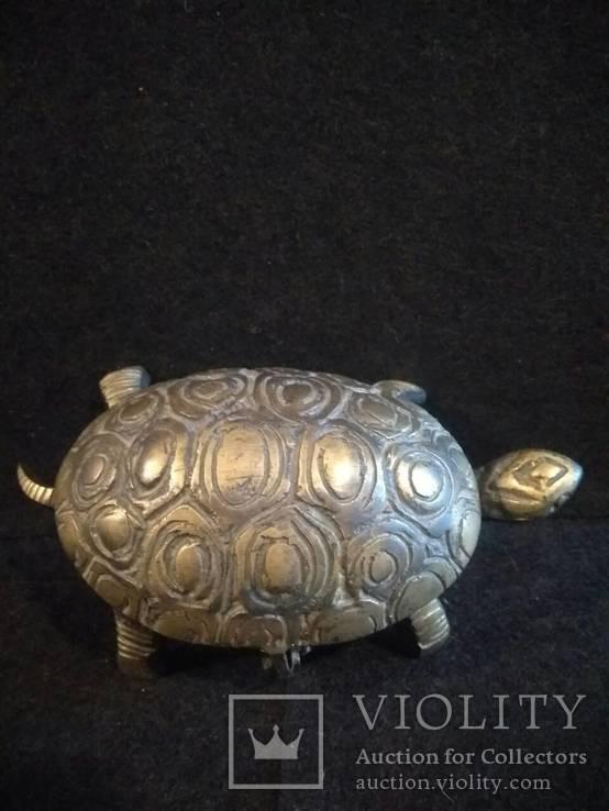 Черепаха-пепельница, фото №6