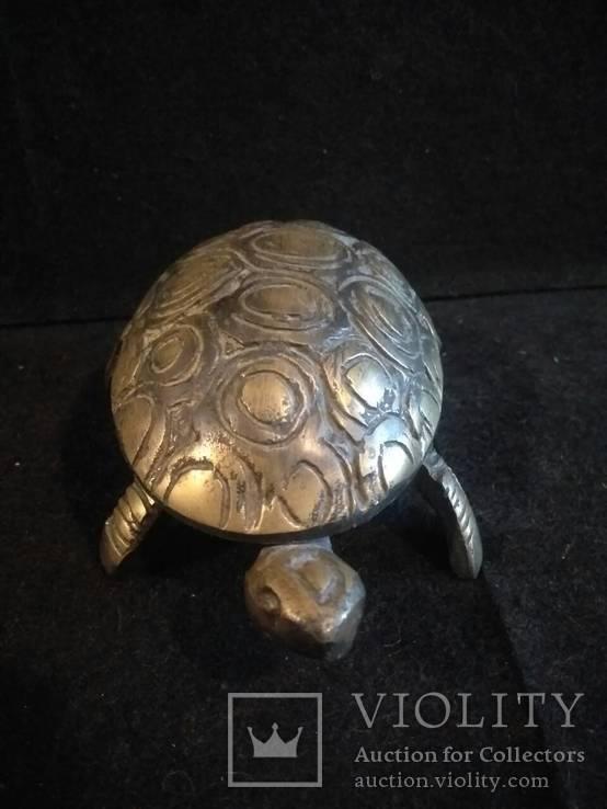 Черепаха-пепельница, фото №10