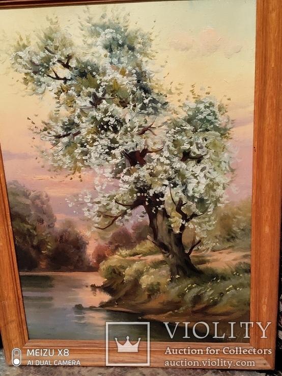 Картина в раме пейзаж,холст,масло автор Алатарцев, фото №7