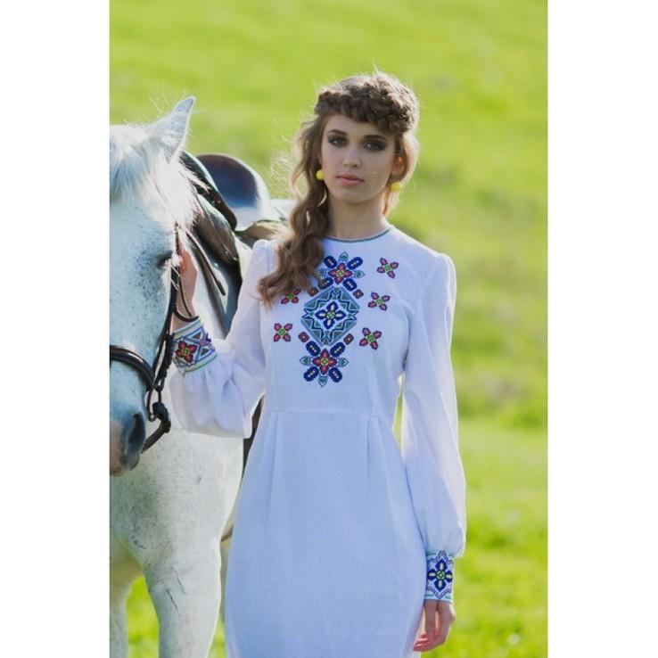 Витончена сукня в національному стилі з багатою вишивкою