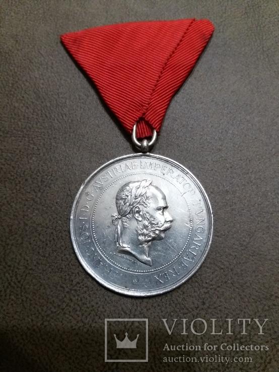 Медаль за развитие коневодства для граждан Чехии, фото №3