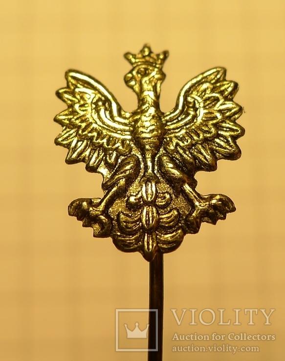 Польский знак. Орёл., фото №2