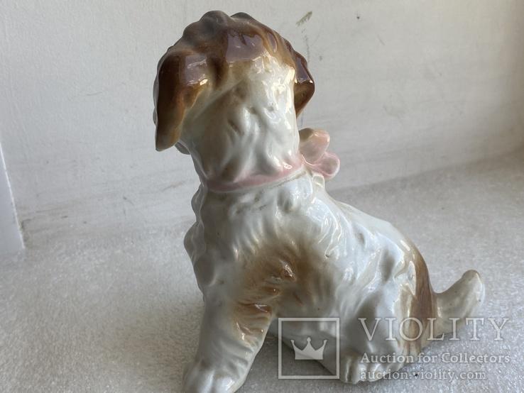 Статуэтка Собачка с бантиком Германия, фото №5