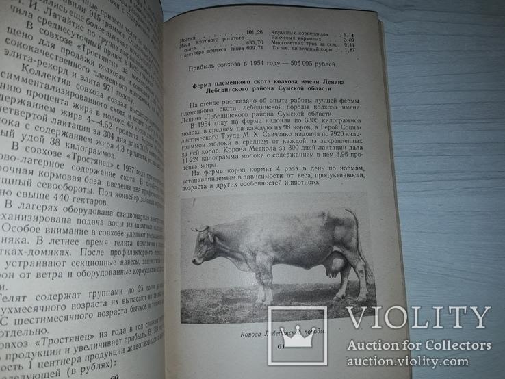 ВСХВ павильон Украинской ССР 1955 путеводитель, фото №8