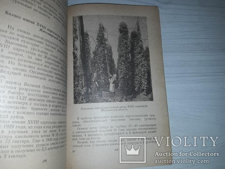 ВСХВ павильон Украинской ССР 1955 путеводитель, фото №9