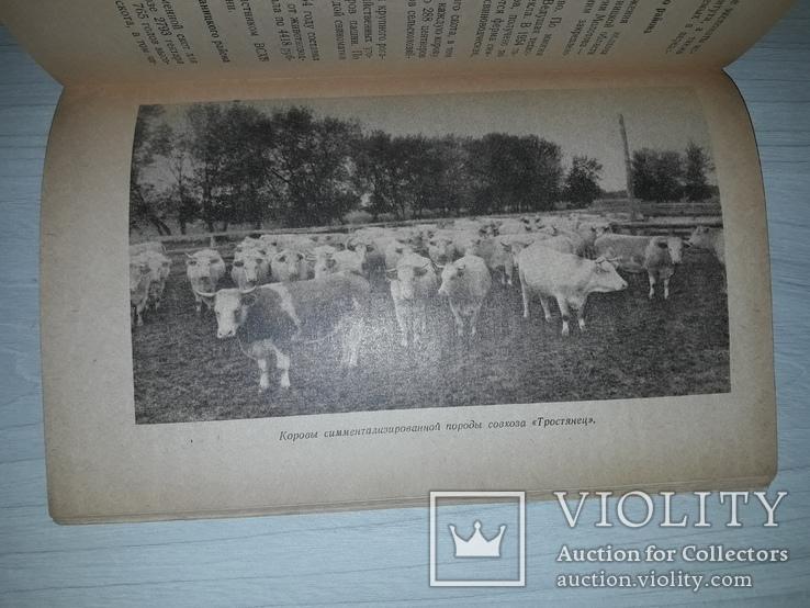 ВСХВ павильон Украинской ССР 1955 путеводитель, фото №12