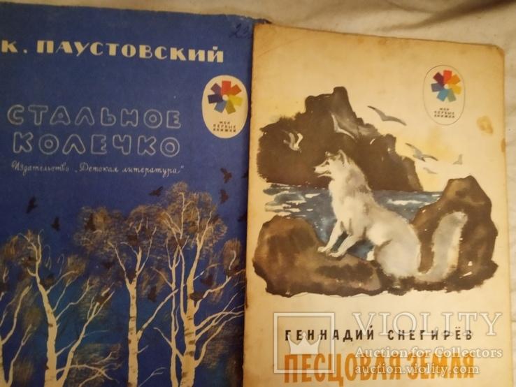 """Серия """" Мои первые книжки """" 2шт, фото №2"""