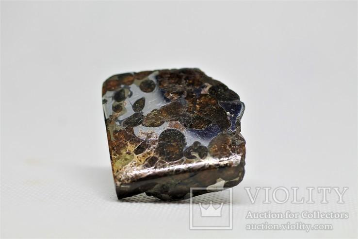 Залізо-кам'яний метеорит Брагін Brahin, 21,7 грам, із сертифікатом автентичності, фото №4