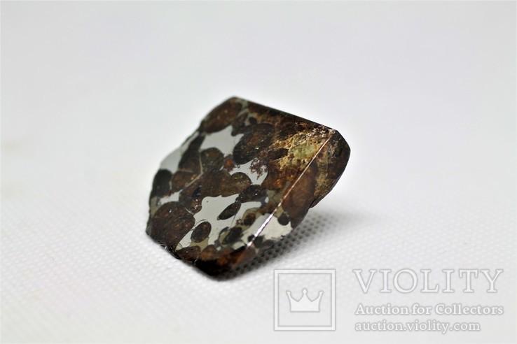Залізо-кам'яний метеорит Брагін Brahin, 21,7 грам, із сертифікатом автентичності, фото №5