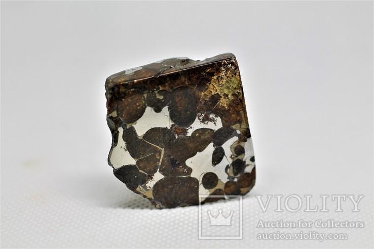 Залізо-кам'яний метеорит Брагін Brahin, 21,7 грам, із сертифікатом автентичності, фото №2
