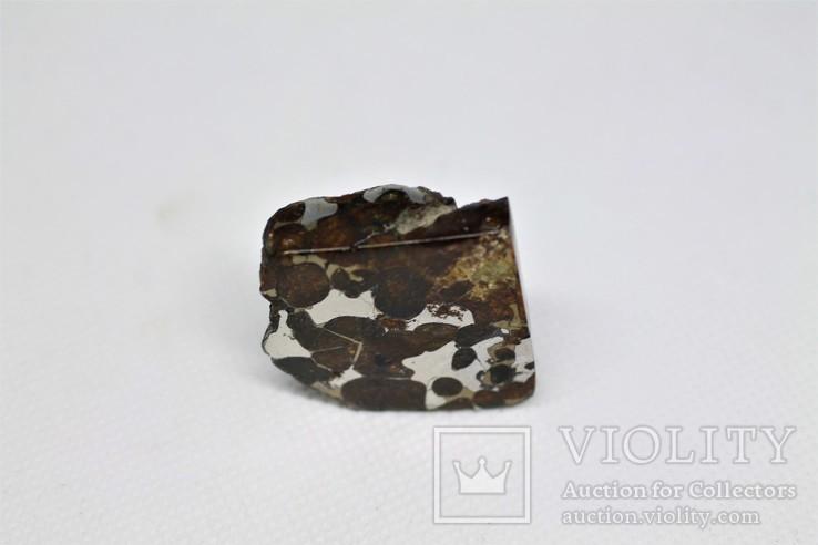 Залізо-кам'яний метеорит Брагін Brahin, 21,7 грам, із сертифікатом автентичності, фото №10