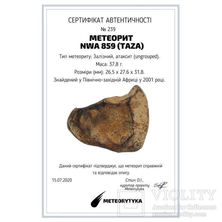 Залізний атаксит NWA 859 (Taza), індивідуал, 37,8 г, з сертифікатом автентичності, фото №11