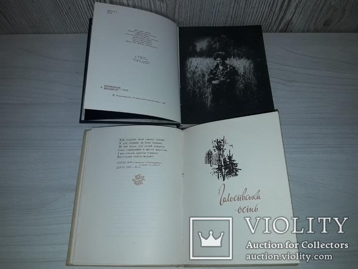 Українська поезія 1940-1980 р.р. 9 збірок українських поетів, фото №7