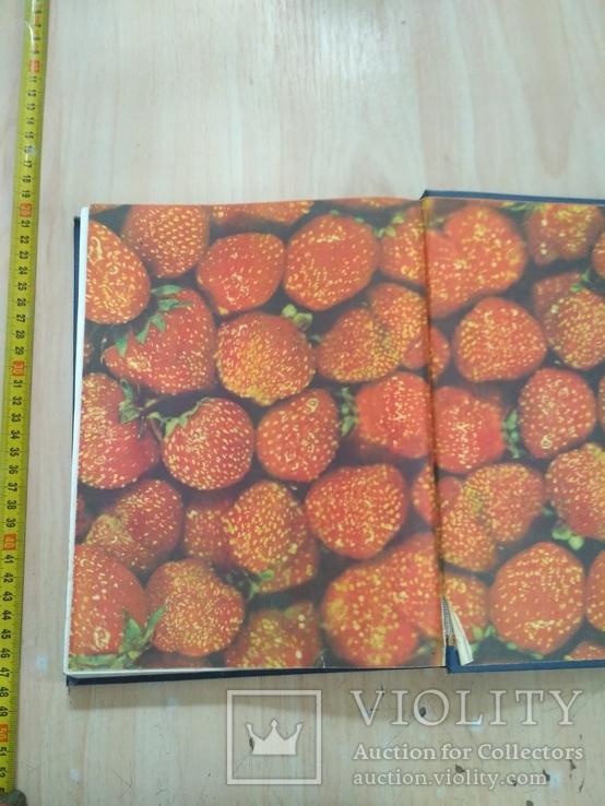 Книга о вкусной и здоровой пище 1986р., фото №6