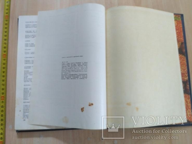 Книга о вкусной и здоровой пище 1986р., фото №7