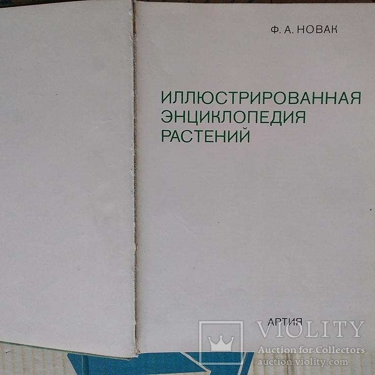 Илюстрированая энциклопедия растений, фото №4