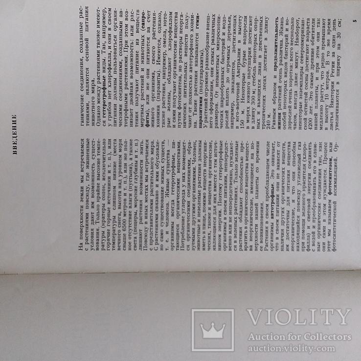 Илюстрированая энциклопедия растений, фото №6