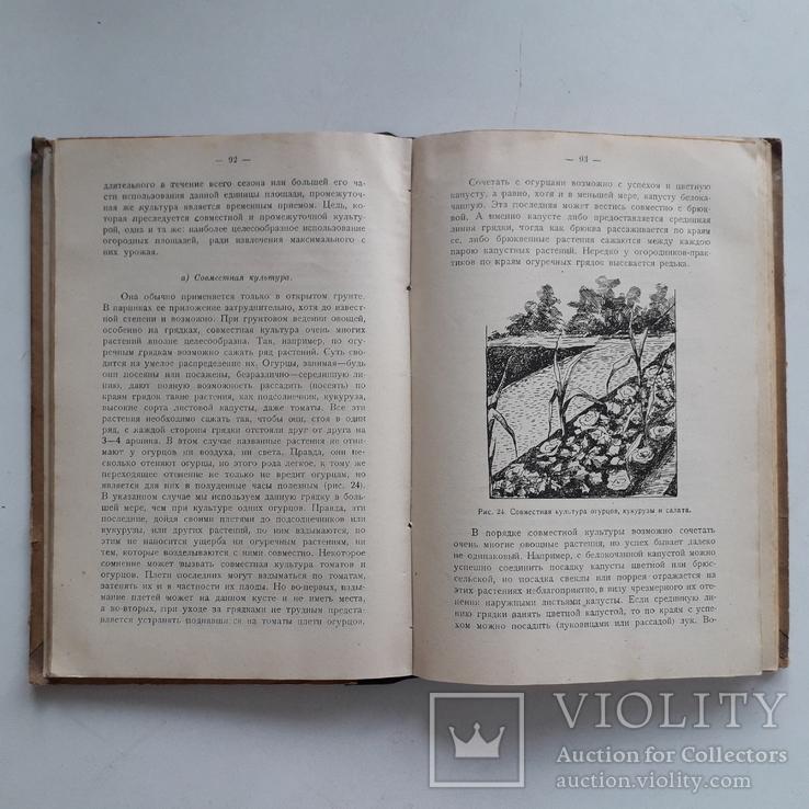 1925 г. Руководство по огородничеству, фото №6