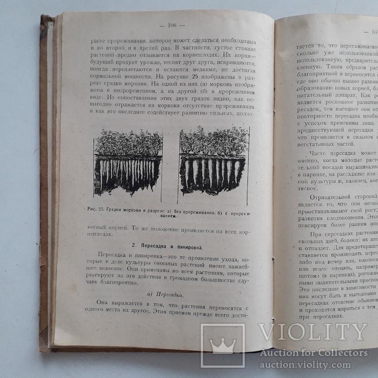 1925 г. Руководство по огородничеству, фото №7