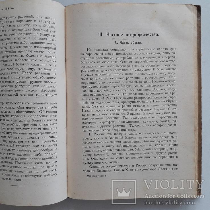 1925 г. Руководство по огородничеству, фото №10