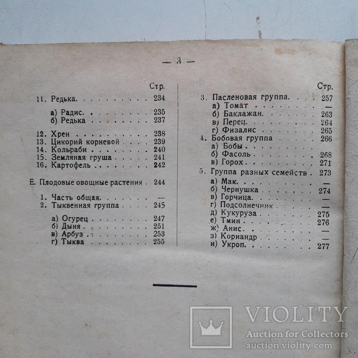 1925 г. Руководство по огородничеству, фото №13