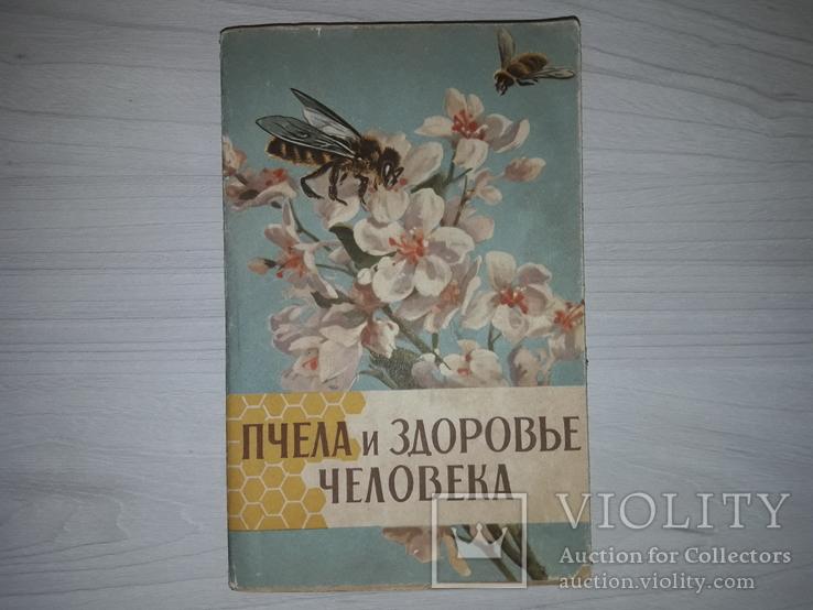 Пчела и здоровье человека 1964, фото №2