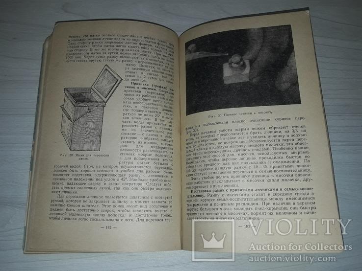 Пчела и здоровье человека 1964, фото №7