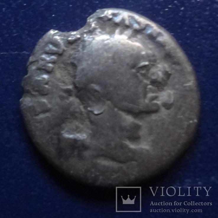 Денарий Тит серебро (Г.7.46), фото №2