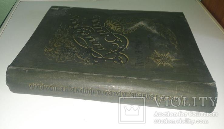 Красота форм в природе. Э. Геккеля. 100 таблиц с описательным текстом. 1904 год, фото №12