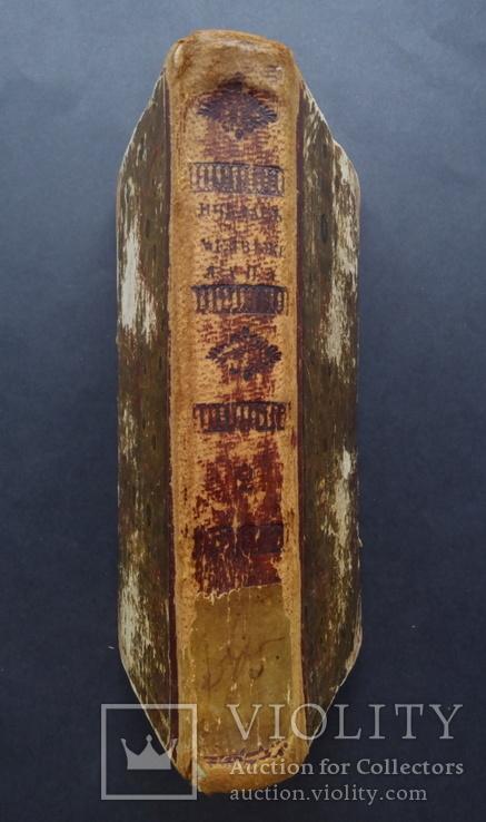 Первое прижизненное издание 1837 Атаман контрабандистов Зотов Р., фото №3