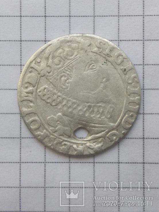 Шестак 1626 Сігізмунд ІІІ, фото №2